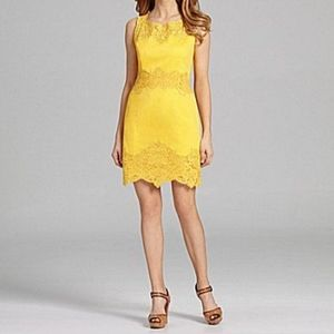 Antonio Melani Canary Yellow Lace Sheath Dress